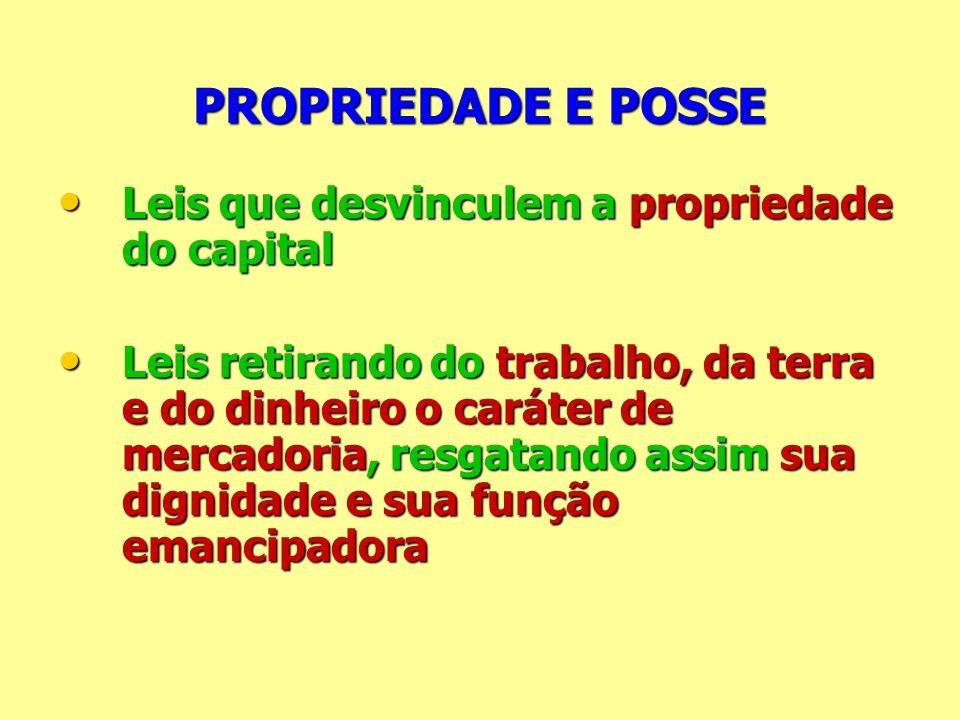 PROPRIEDADE E POSSE Leis que desvinculem a propriedade do capital