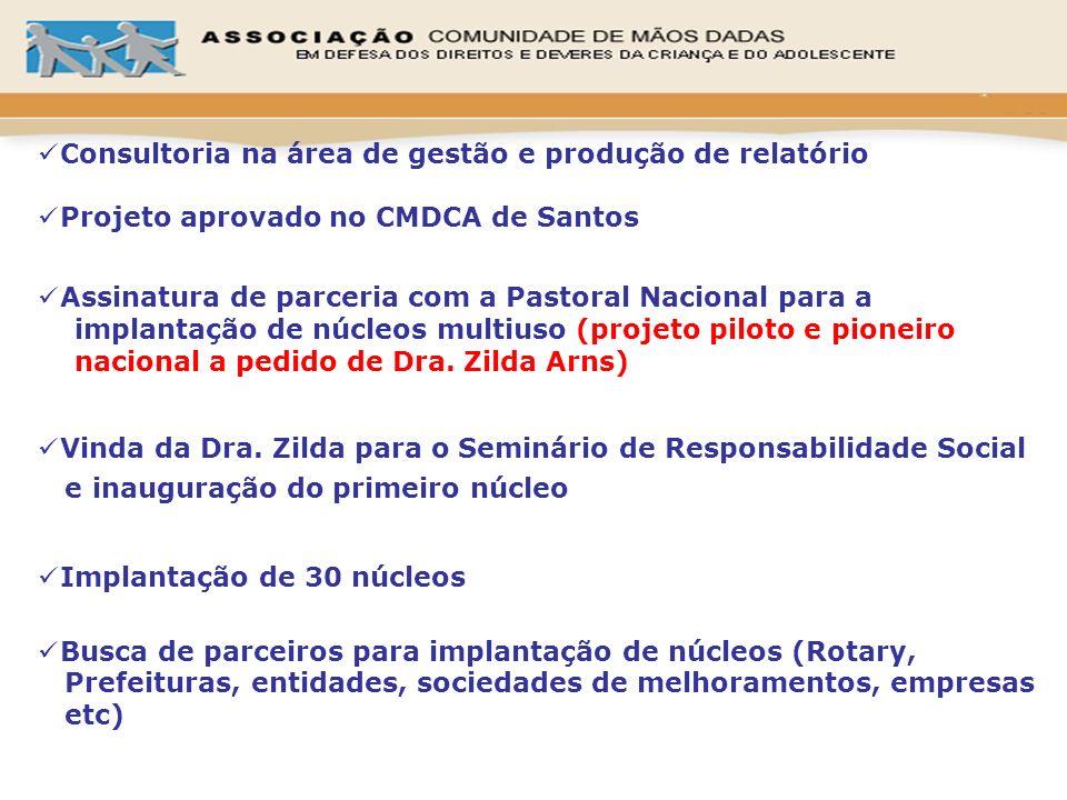 Consultoria na área de gestão e produção de relatório
