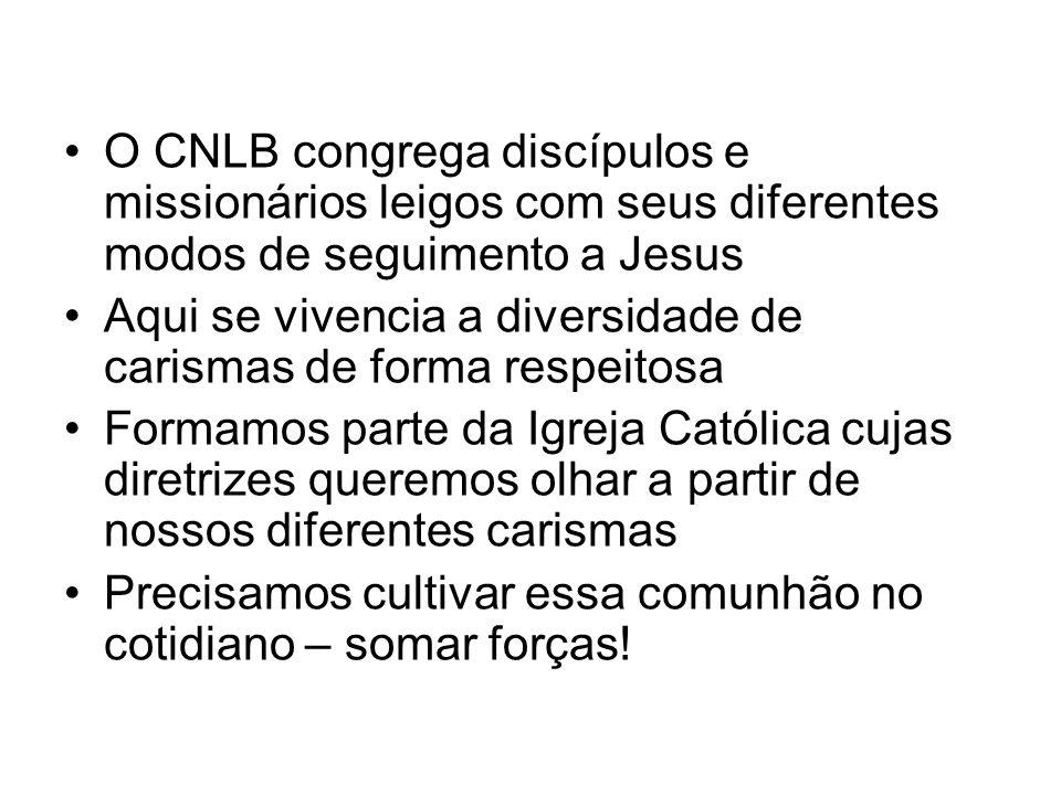 O CNLB congrega discípulos e missionários leigos com seus diferentes modos de seguimento a Jesus