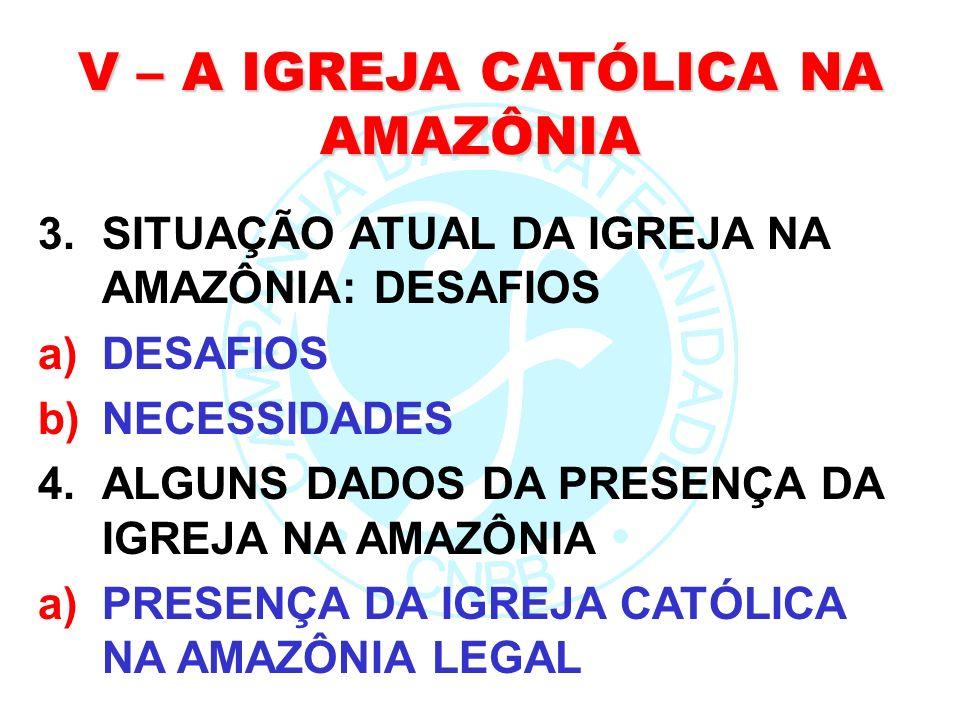 V – A IGREJA CATÓLICA NA AMAZÔNIA
