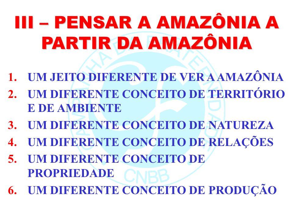 III – PENSAR A AMAZÔNIA A PARTIR DA AMAZÔNIA