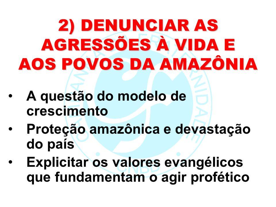 2) DENUNCIAR AS AGRESSÕES À VIDA E AOS POVOS DA AMAZÔNIA