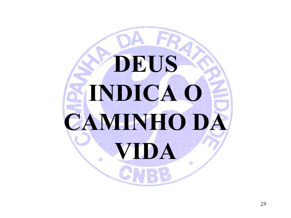 DEUS INDICA O CAMINHO DA VIDA