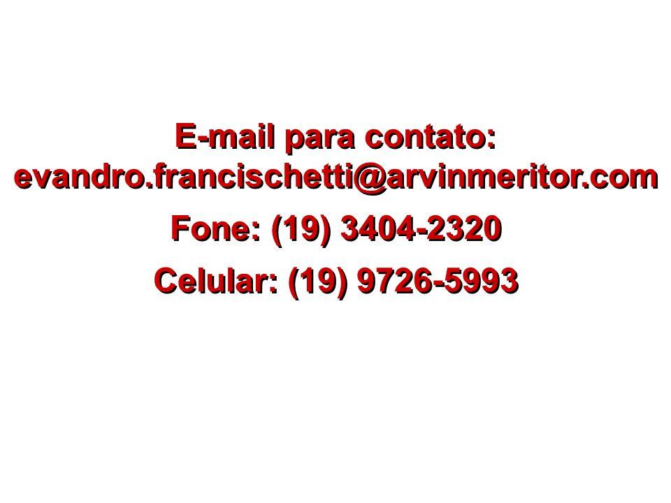 E-mail para contato: evandro.francischetti@arvinmeritor.com