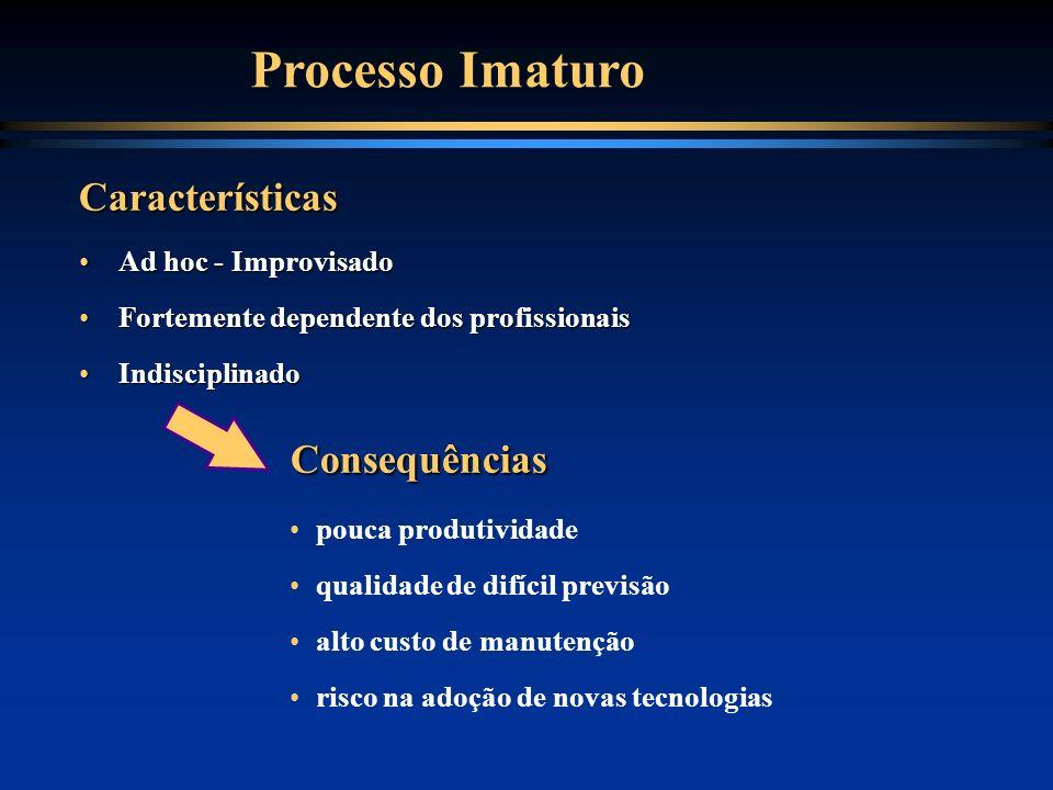 Processo Imaturo Consequências Características Ad hoc - Improvisado