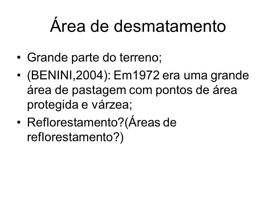 Área de desmatamento Grande parte do terreno;