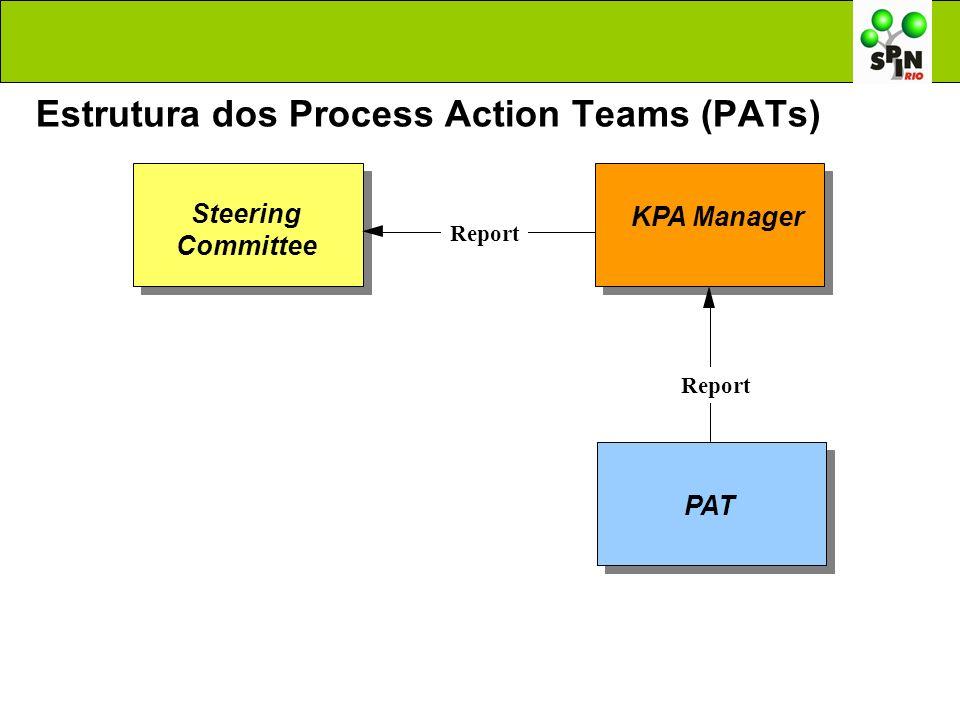 Estrutura dos Process Action Teams (PATs)