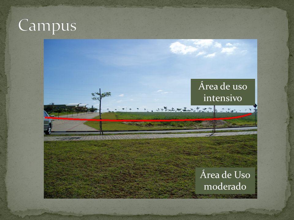 Campus Área de uso intensivo Área de Uso moderado