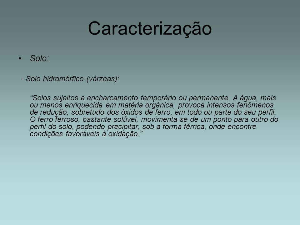 Caracterização Solo: - Solo hidromórfico (várzeas):