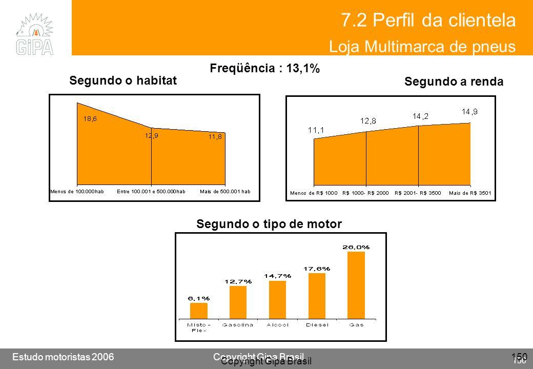 7.2 Perfil da clientela Loja Multimarca de pneus