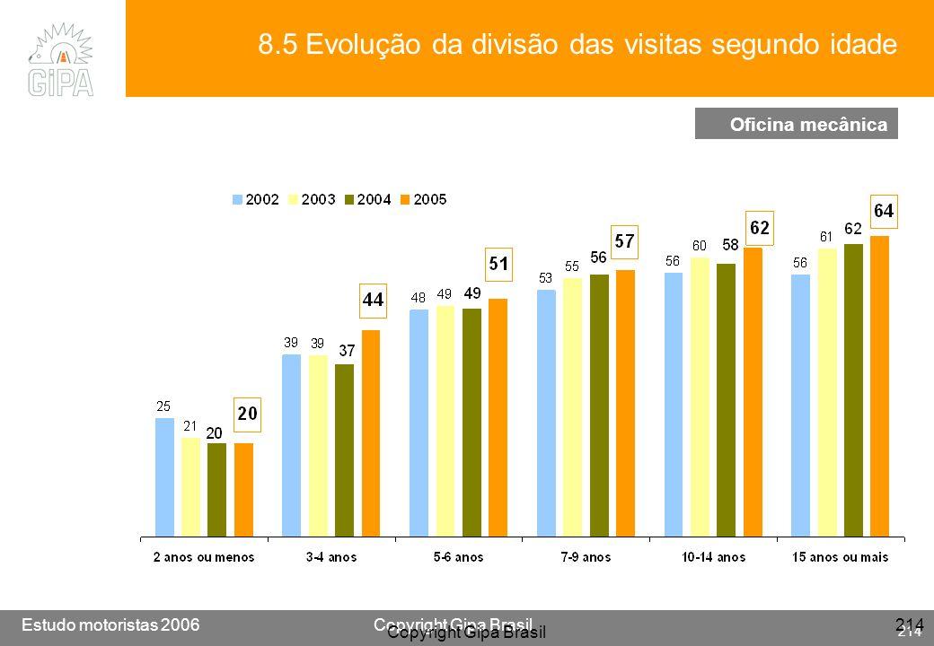 8.5 Evolução da divisão das visitas segundo idade