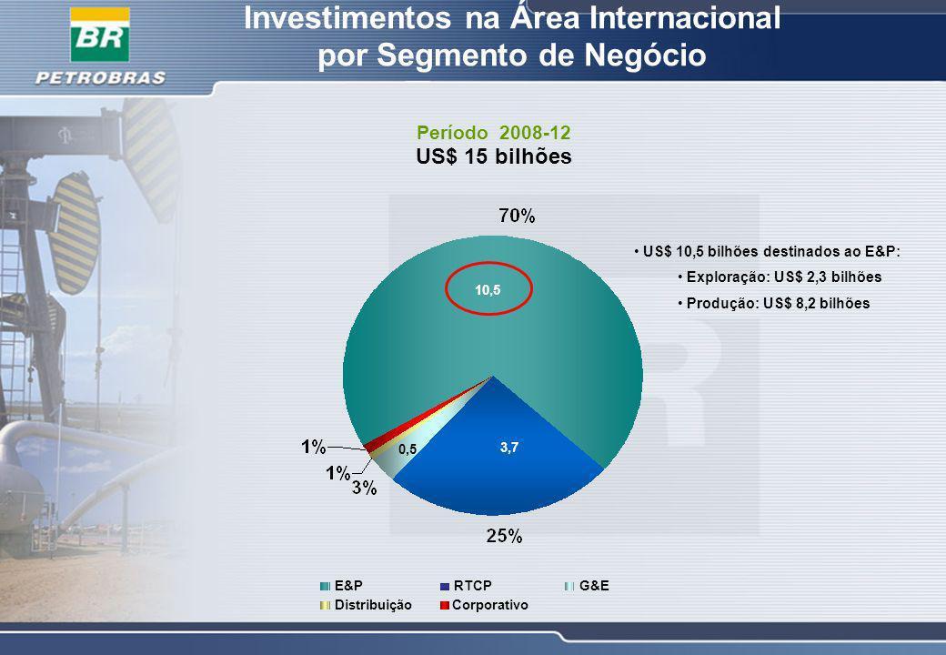 Investimentos na Área Internacional por Segmento de Negócio