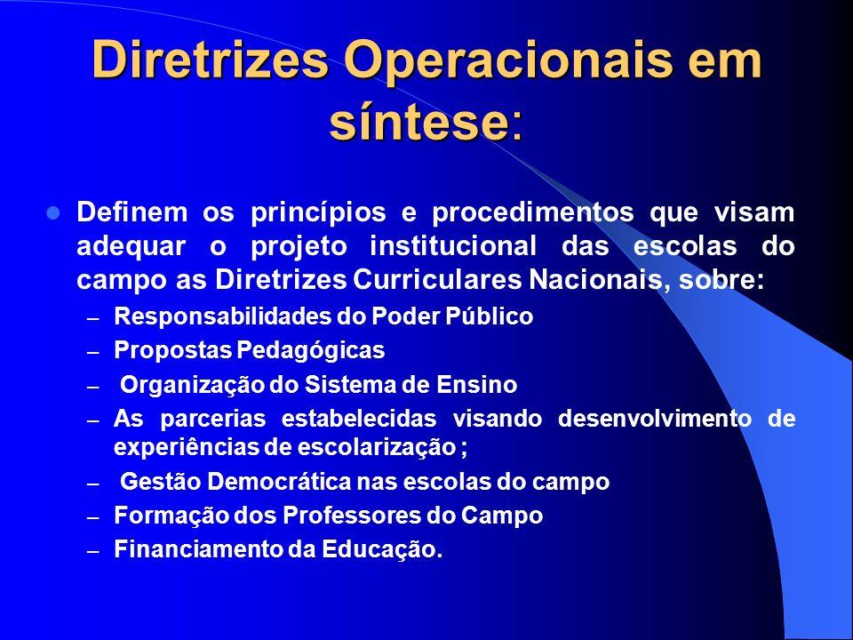 Diretrizes Operacionais em síntese: