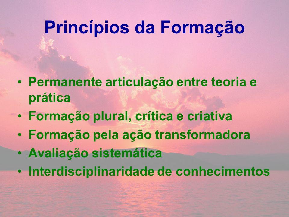 Princípios da Formação