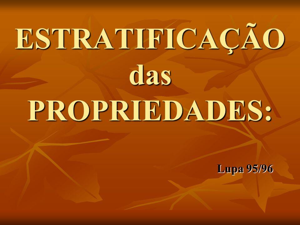 ESTRATIFICAÇÃO das PROPRIEDADES: Lupa 95/96