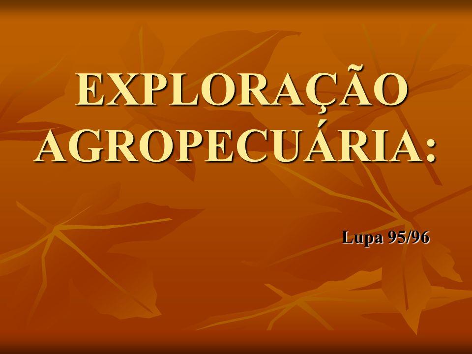 EXPLORAÇÃO AGROPECUÁRIA: Lupa 95/96