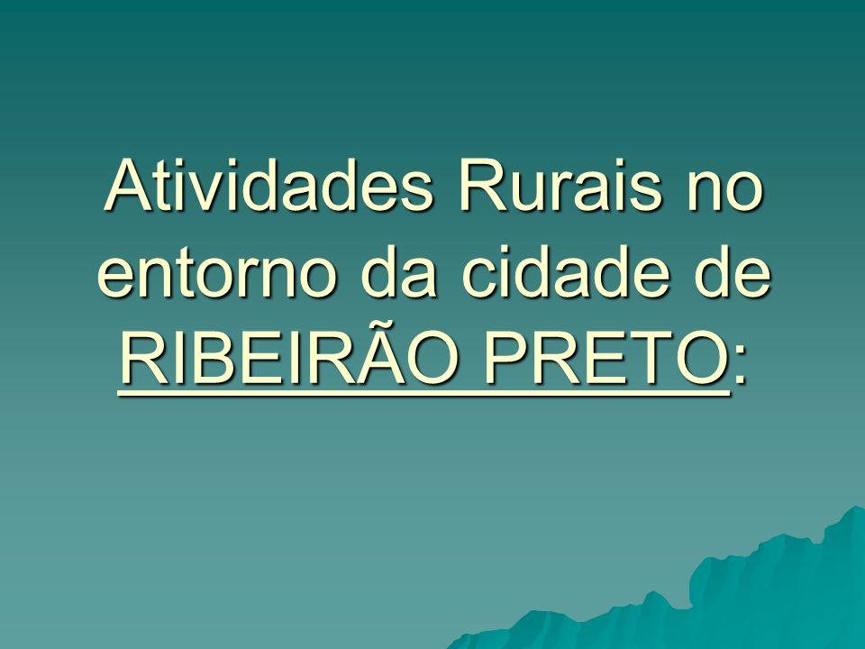 Atividades Rurais no entorno da cidade de RIBEIRÃO PRETO: