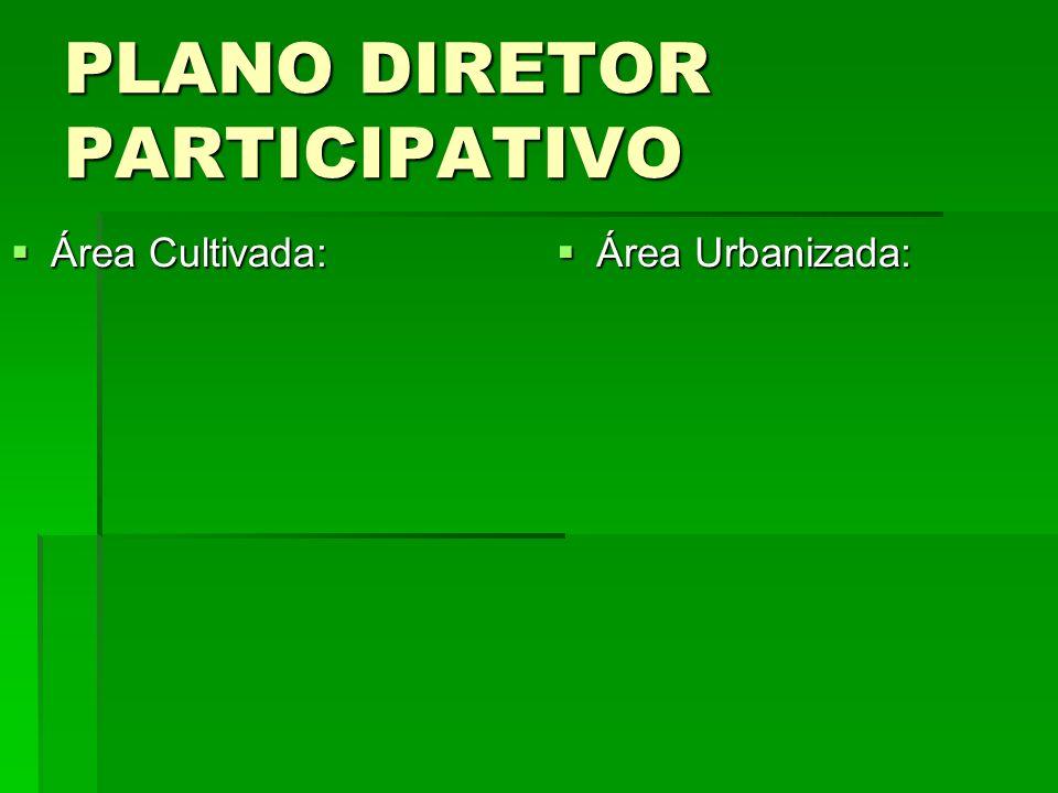 PLANO DIRETOR PARTICIPATIVO