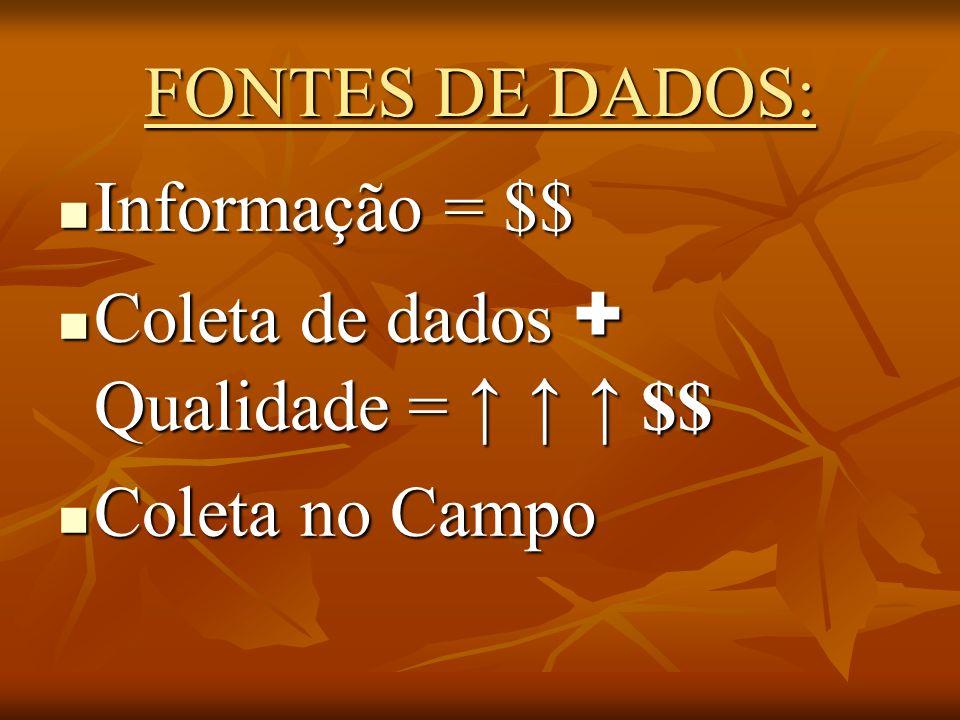 FONTES DE DADOS: Informação = $$ Coleta de dados + Qualidade = ↑ ↑ ↑ $$ Coleta no Campo