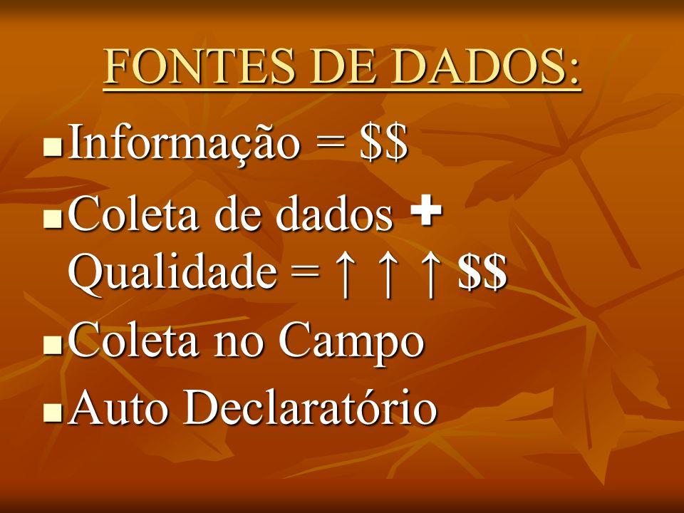 FONTES DE DADOS: Informação = $$ Coleta de dados + Qualidade = ↑ ↑ ↑ $$ Coleta no Campo.