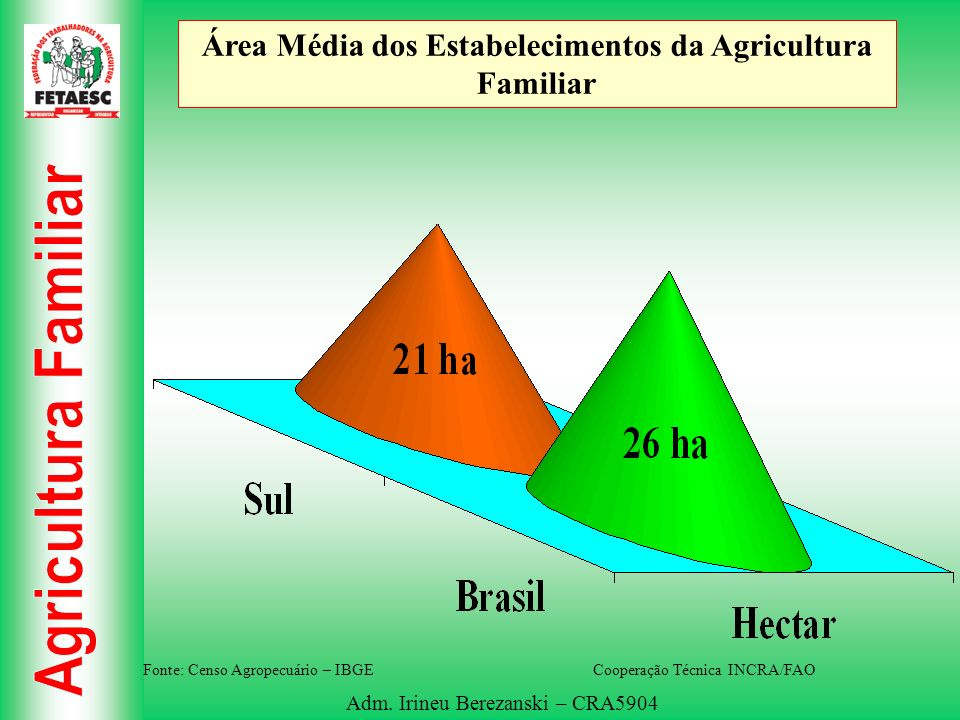 Área Média dos Estabelecimentos da Agricultura Familiar