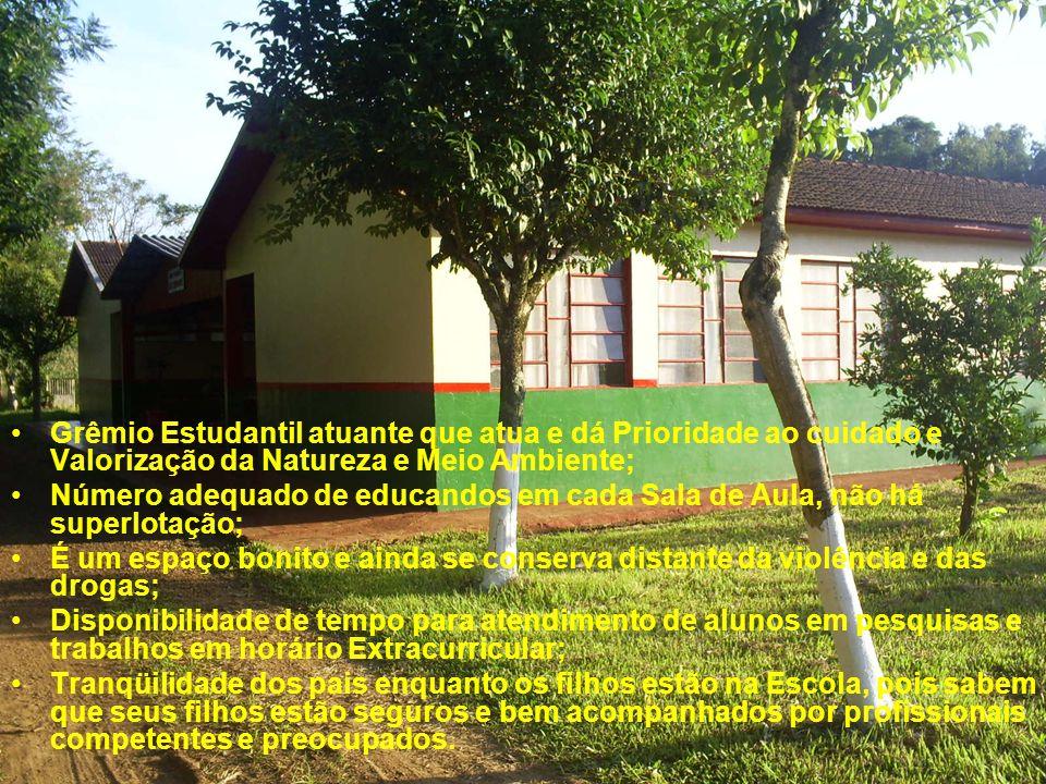 Grêmio Estudantil atuante que atua e dá Prioridade ao cuidado e Valorização da Natureza e Meio Ambiente;