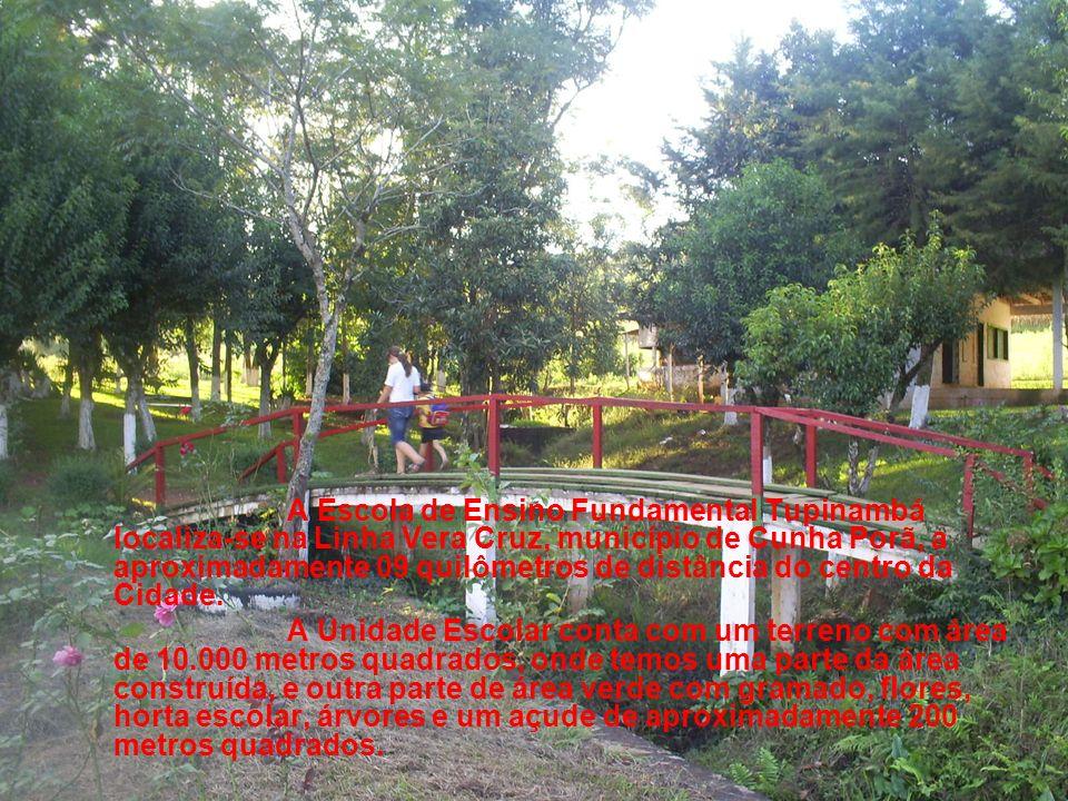 A Escola de Ensino Fundamental Tupinambá localiza-se na Linha Vera Cruz, município de Cunha Porã, a aproximadamente 09 quilômetros de distância do centro da Cidade.