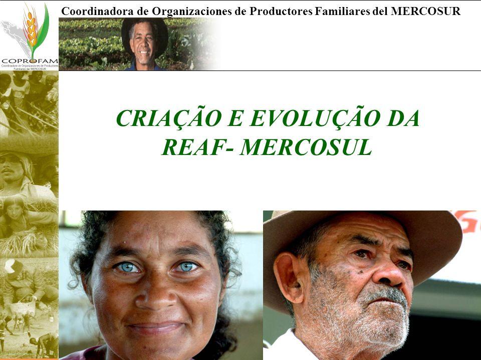 CRIAÇÃO E EVOLUÇÃO DA REAF- MERCOSUL
