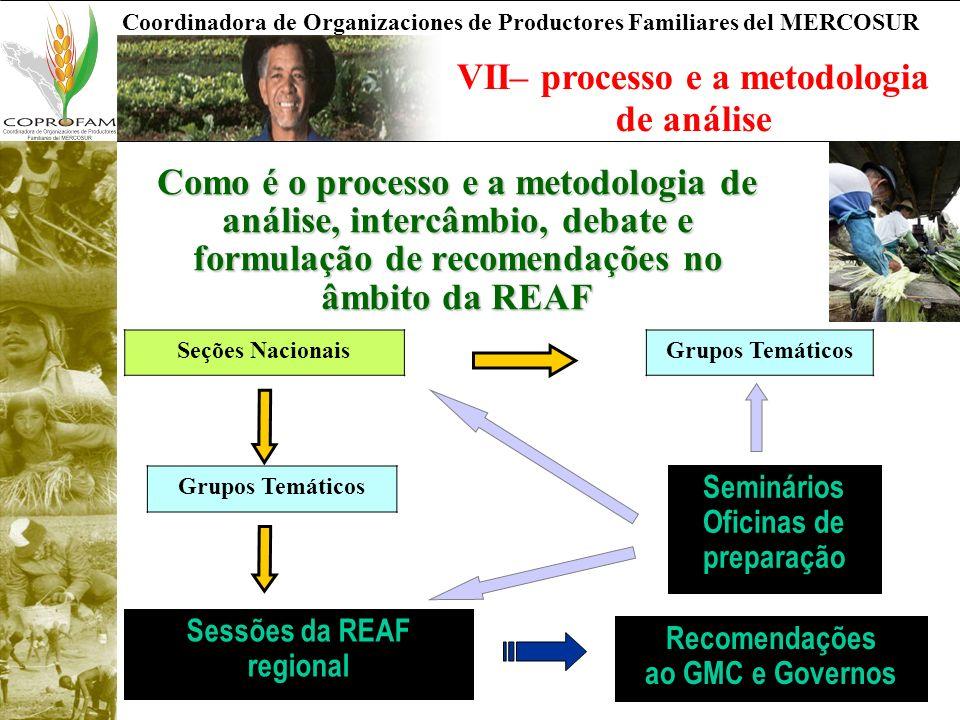 VII– processo e a metodologia de análise