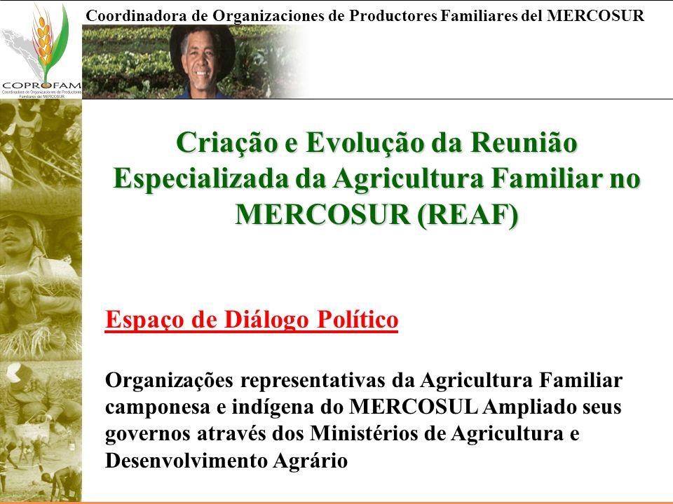 Criação e Evolução da Reunião Especializada da Agricultura Familiar no MERCOSUR (REAF)