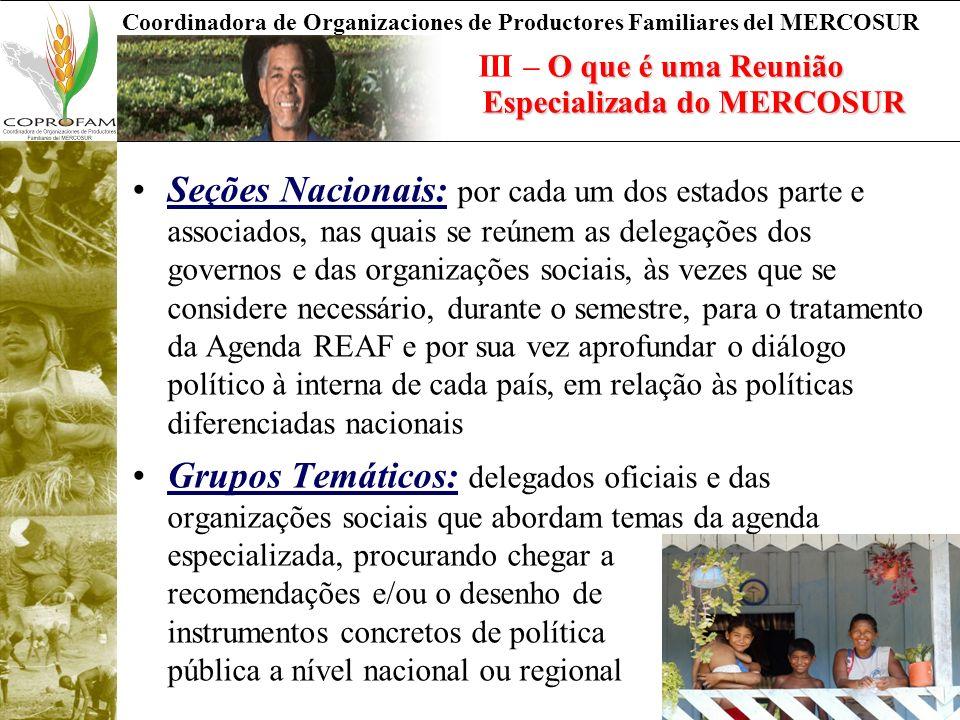 III – O que é uma Reunião Especializada do MERCOSUR