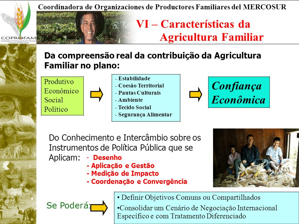 VI – Características da Agricultura Familiar