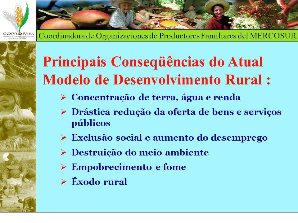 Principais Conseqüências do Atual Modelo de Desenvolvimento Rural :
