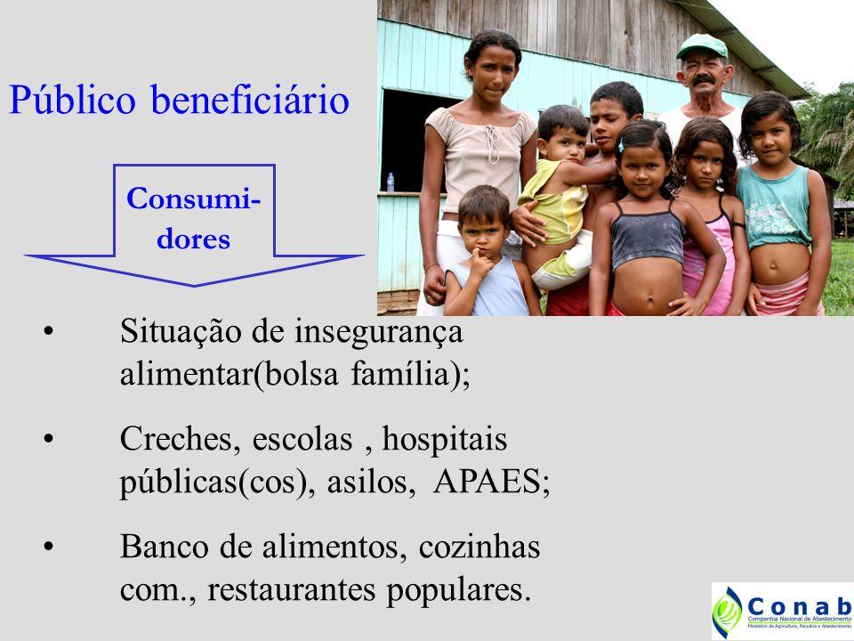 Público beneficiário Situação de insegurança alimentar(bolsa família);