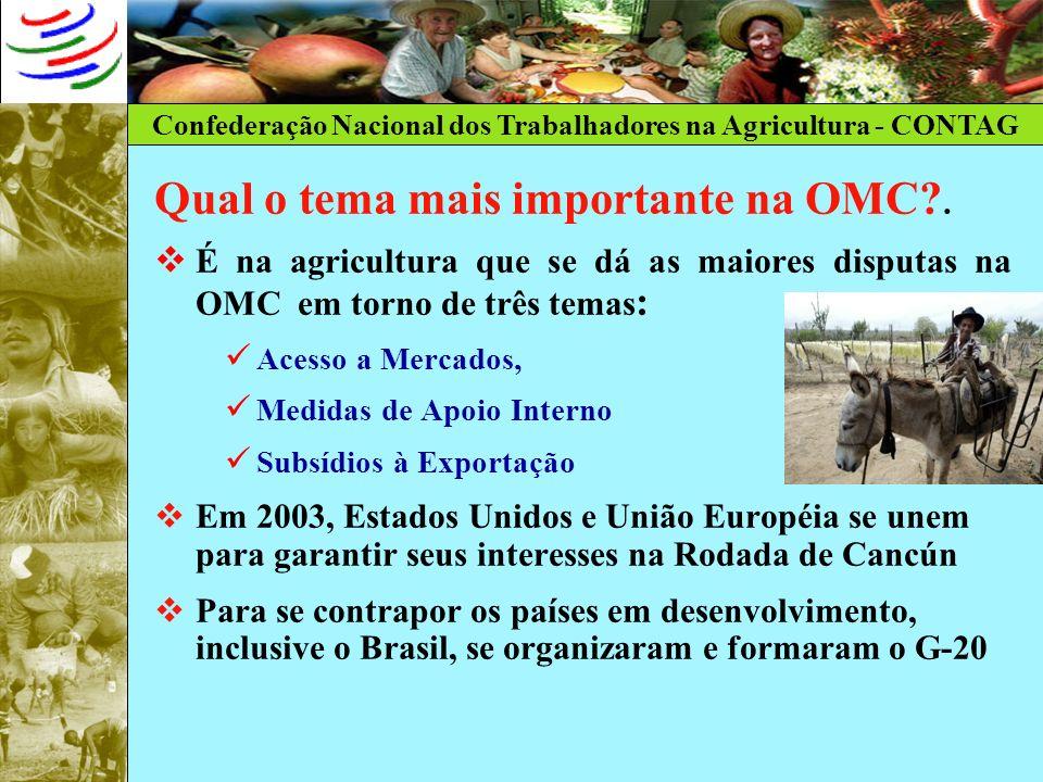 Qual o tema mais importante na OMC .