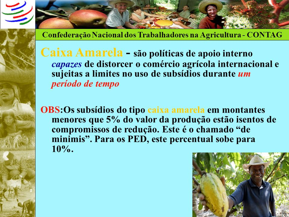 Caixa Amarela - são políticas de apoio interno capazes de distorcer o comércio agrícola internacional e sujeitas a limites no uso de subsídios durante um período de tempo