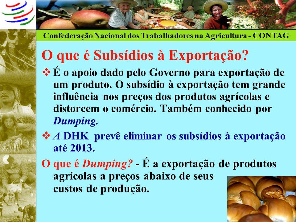 O que é Subsídios à Exportação