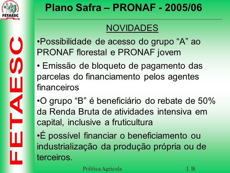 Plano Safra – PRONAF - 2005/06 NOVIDADES
