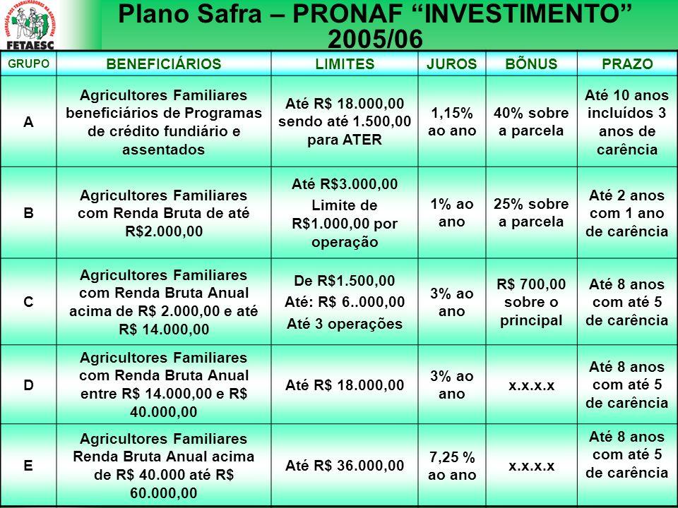 Plano Safra – PRONAF INVESTIMENTO 2005/06