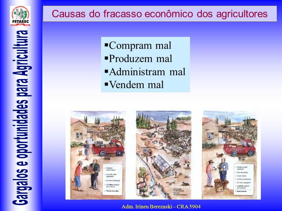 Causas do fracasso econômico dos agricultores