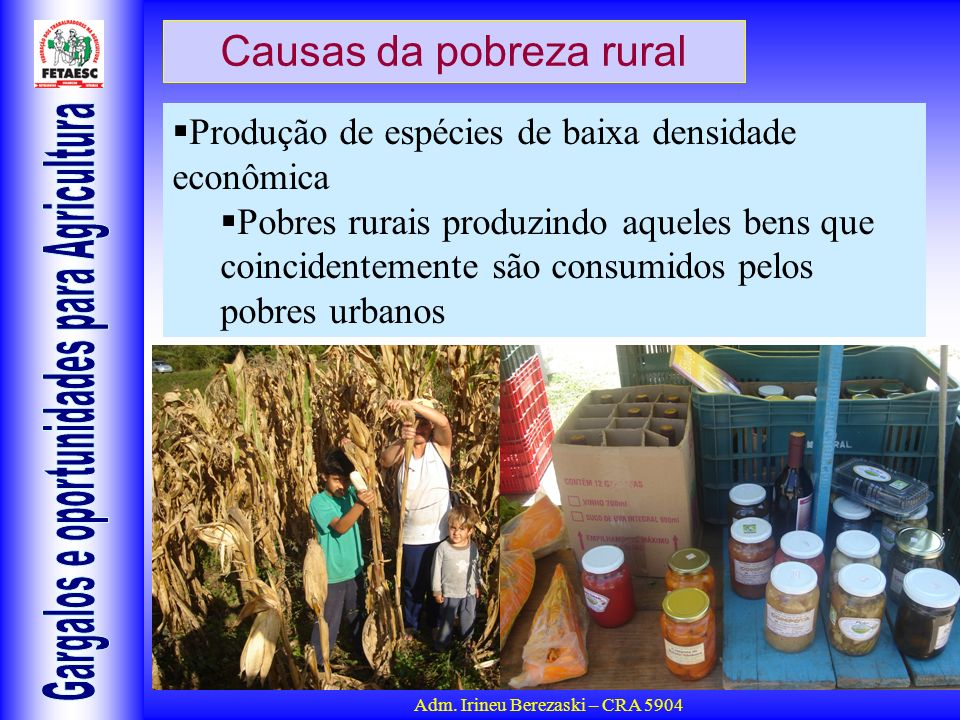 Causas da pobreza rural