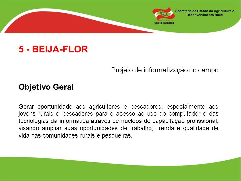 5 - BEIJA-FLOR Objetivo Geral Projeto de informatização no campo