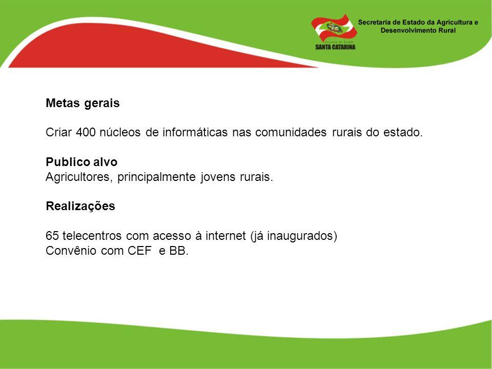 Metas gerais Criar 400 núcleos de informáticas nas comunidades rurais do estado. Publico alvo. Agricultores, principalmente jovens rurais.