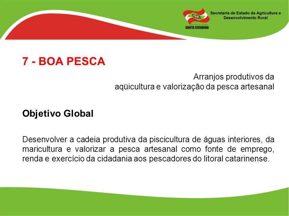 7 - BOA PESCA Arranjos produtivos da aqüicultura e valorização da pesca artesanal. Objetivo Global.