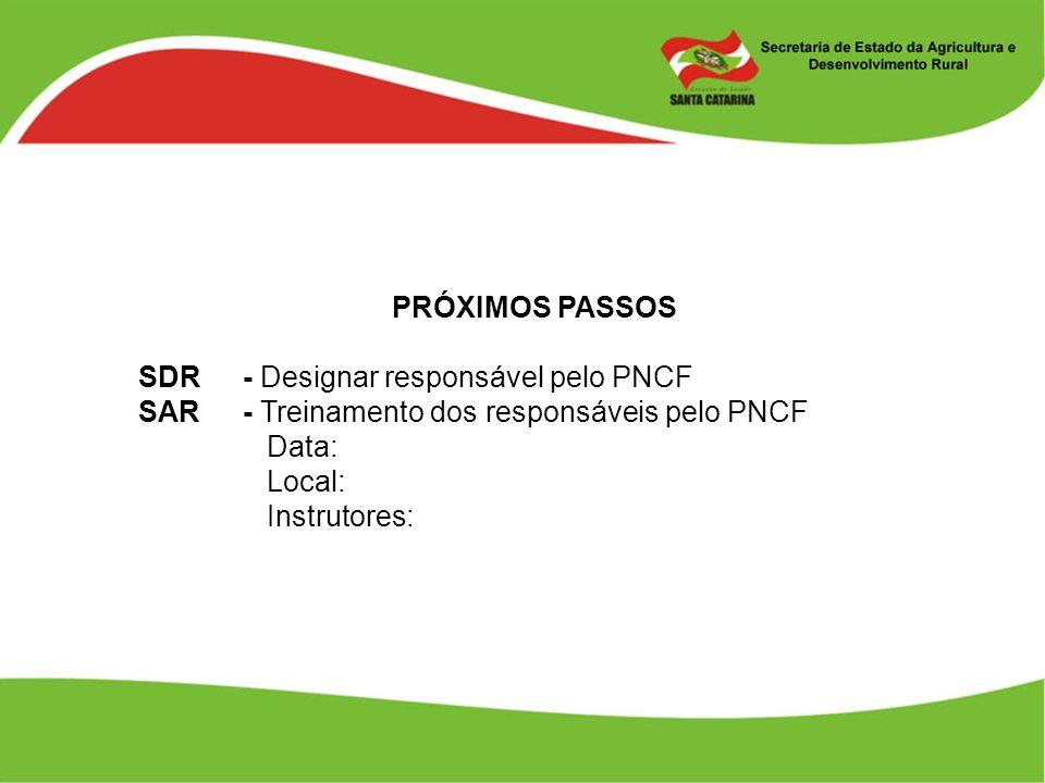 PRÓXIMOS PASSOS SDR - Designar responsável pelo PNCF. SAR - Treinamento dos responsáveis pelo PNCF.
