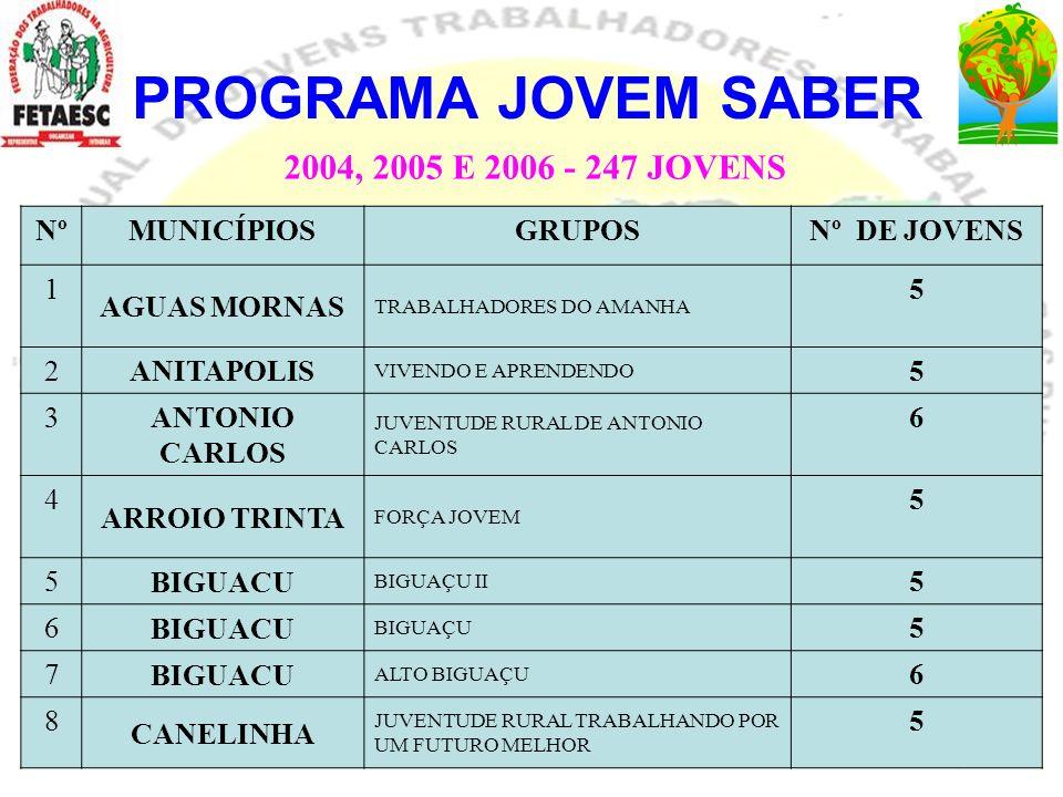PROGRAMA JOVEM SABER 2004, 2005 E 2006 - 247 JOVENS Nº MUNICÍPIOS
