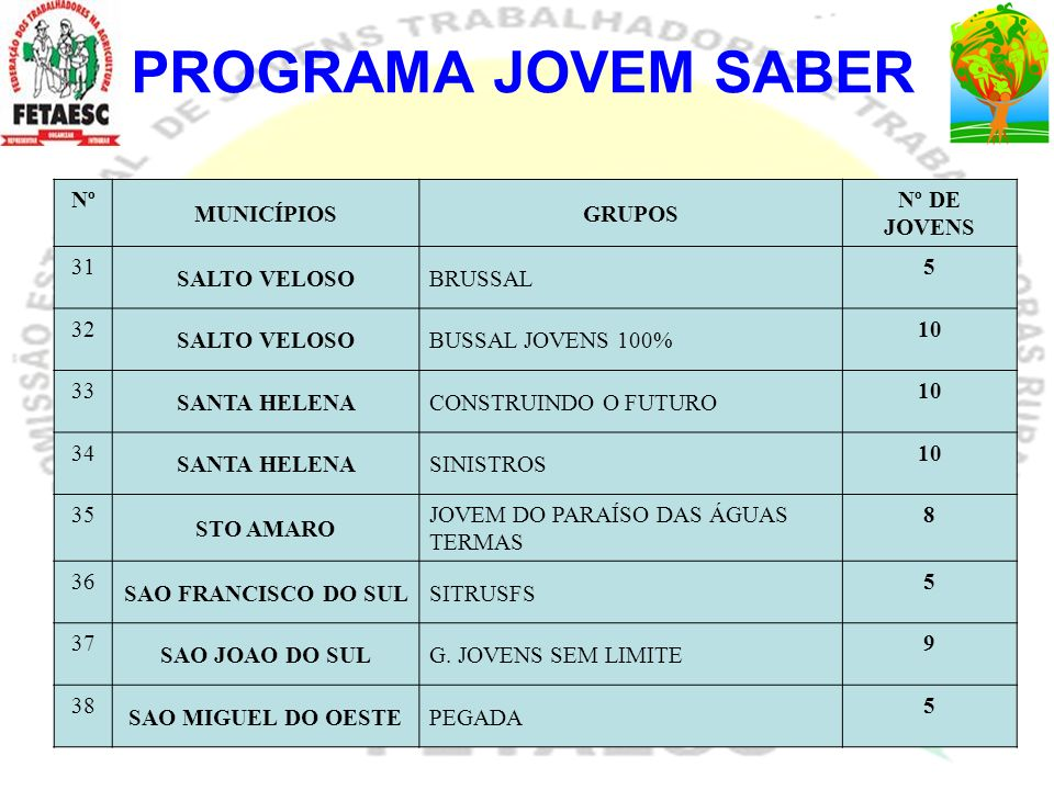 PROGRAMA JOVEM SABER Nº MUNICÍPIOS GRUPOS Nº DE JOVENS 31 SALTO VELOSO