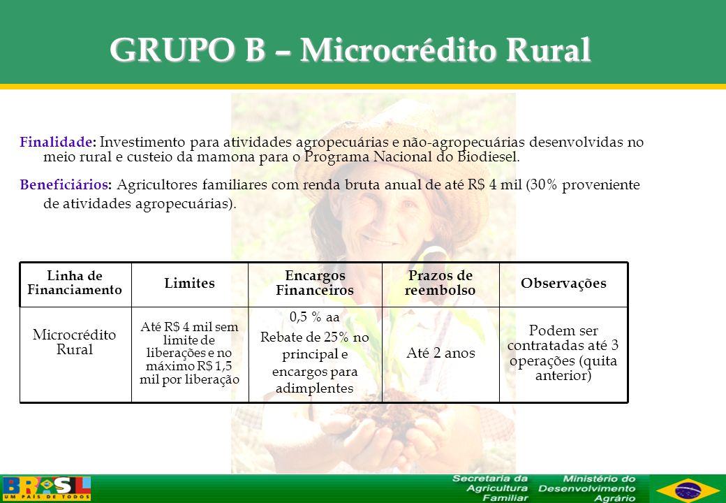 GRUPO B – Microcrédito Rural