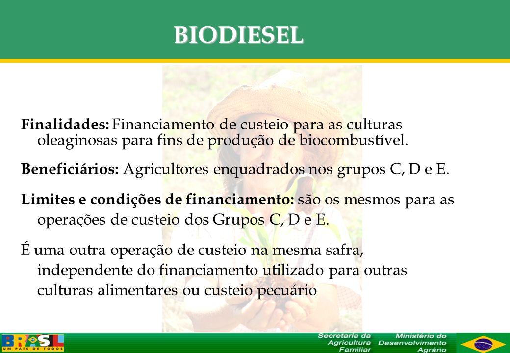 BIODIESEL Finalidades: Financiamento de custeio para as culturas oleaginosas para fins de produção de biocombustível.