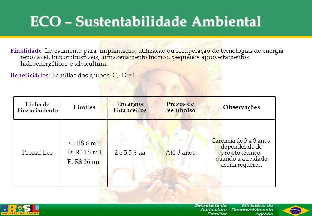 ECO – Sustentabilidade Ambiental